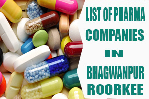 List of Pharma Companies in Bhagwanpur Roorkee